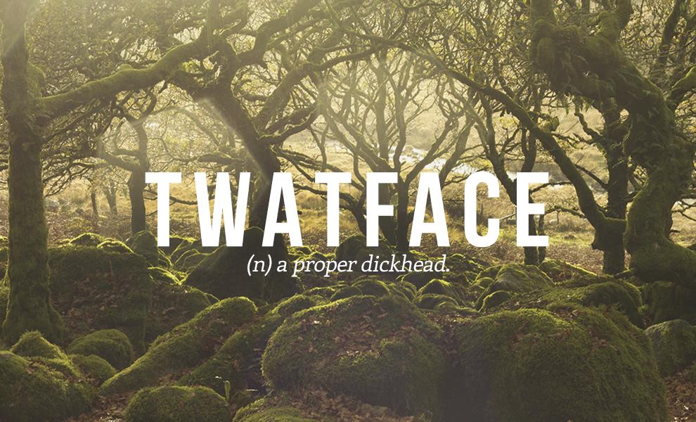 twatface definition