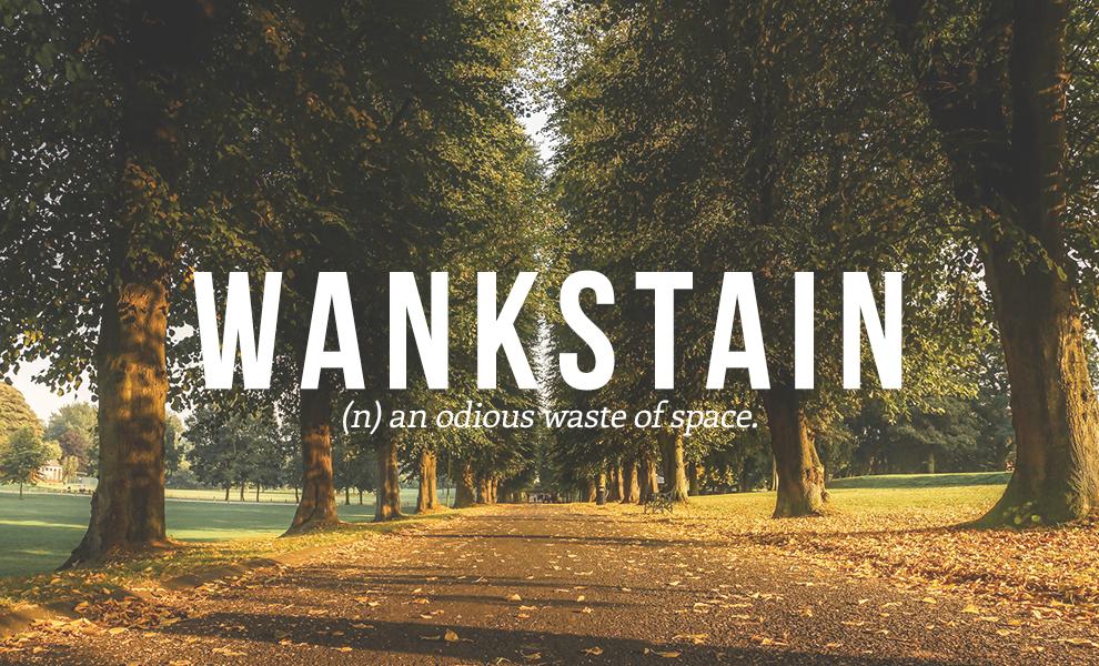 wankface definition